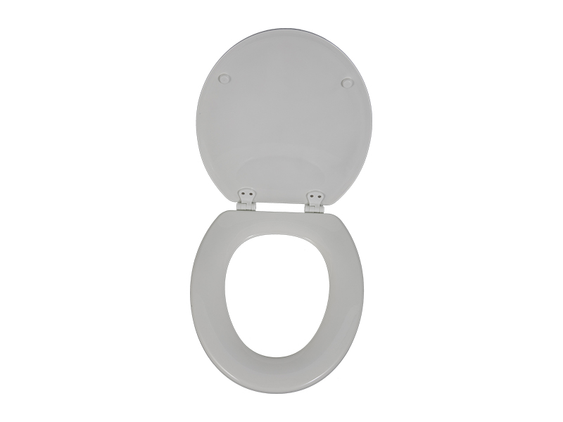 Fast disassembly and assembly technology of toilet cover assembly